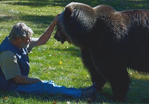 bart the bear kodiak