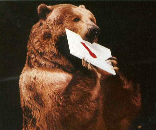 bart the bear filmography